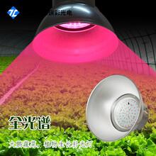 厂家直销植物灯补光灯led全光谱吊灯