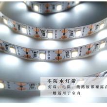 瑞彩LED灯带低压5V灯带2835led软灯条手机充电宝供电图片