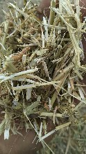 花生秧秸秆优质花生秧草粉厂家