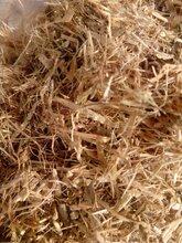 聊城养牛养羊草粉饲料豆秸草粉价格