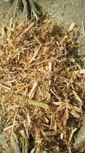 肉牛草粉饲料优质豆秸粉价格