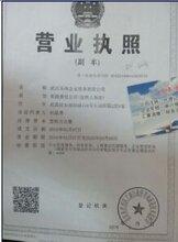 财务审计报告500元,代理记账100元,武汉公司注册免费办理