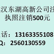 武汉东湖高新公司注销2016年多少钱