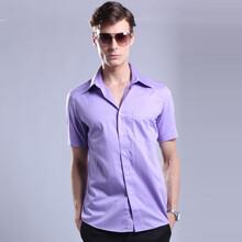 橱窗推荐男士紫罗兰男短袖衬衣商务正装新款修身紫罗兰81衬衫