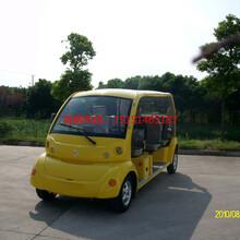 上海东方明珠景区5座电动观光车游览代步车