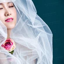 在柠檬树拍婚纱照好看不
