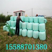 玉米杆青储打捆机玉米青储打捆机厂家