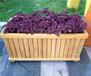 合肥花箱厂家,振兴供应成品花箱、精美花盆价格,花箱制作