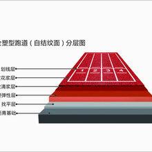 全塑型自结纹跑道OEM/全塑型自结纹跑道施工图片