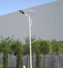 石嘴山楷举光伏景观灯照明太阳能专用电池批发