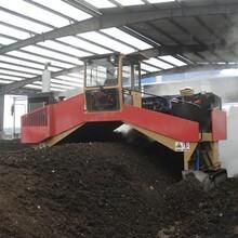 3000机械履带型翻堆机-有机肥行走式抛翻机图片