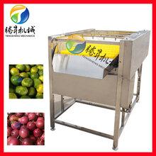 平衡喷淋毛刷洗果机图片