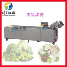 漂燙機蔬菜預煮設備果蔬漂燙機圖片