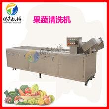 驚雷筍絲清洗機輸送帶式氣泡果蔬洗菜機圖片