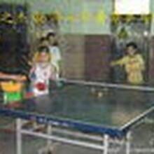 东莞学乒乓球康之杰乒乓球培训班招生简章