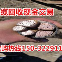 白云鄂博礦電纜回收價格漲20%圖片
