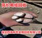 郸城通讯电缆回收