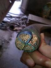 石河子电缆回收~石河子绝缘铝导线回收(应声上涨)图片