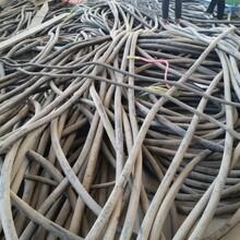 伊春电缆回收~伊春工程剩余电缆回收(冲高回落)图片