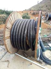 普兰店电缆回收~普兰店绝缘铝导线回收(放量反弹)图片