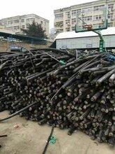 邳州电缆回收-邳州(电线)电缆回收价格反弹图片