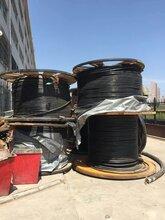 天长电缆回收价格高
