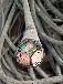楚雄電纜回收楚雄庫存積壓電纜回收楚雄電纜回收關注