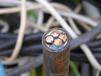 玉樹電纜回收-玉樹高壓電纜回收單價