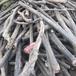 黃山電纜回收黃山電纜回收便捷服務