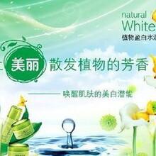 上海化妆品OEM加工一条龙上海化妆品贴牌代工厂图片