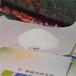 十三酸鈉無磷無機鹽深圳市新葳科技