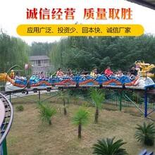 滑行龙_户外大型游乐设备_就选实力强大的厂家_郑州金盟正确的选择图片