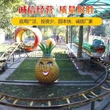 果虫滑车多少钱一台,郑州青虫滑车供应商图片