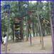 廣州兒童游樂設備體能樂園