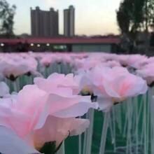 玫瑰花海出租玫瑰花海灯展览