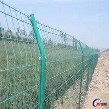 优质铁丝网护栏景区围栏网小区防护围栏网——河北昌熙护栏网生产厂家