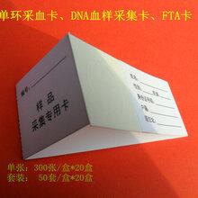 法醫DNA采血卡樣品采集卡單環采血卡廠家直銷