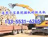 轮式抓木机厂家小型抓木机全国送货上门