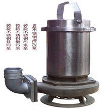 天津污水泵生产厂家大口径污水泵潜水污水泵