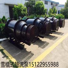 简易式轴流泵-中吸式轴流泵图片