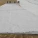 热销300克白色土工布起订量1000平方米