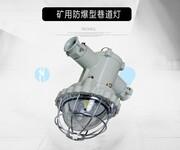 浙江创瑞厂家新款促销CRX7106矿用隔爆型LED巷道灯图片