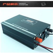 背式锂电一体电鱼机价格图片