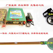 进口一体式锂电池电鱼机超声波锂电12v电鱼机图片