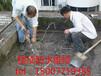 南宁市外墙渗水维修窗台防水补漏工程公司