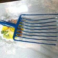钢叉九齿图片