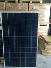 润峰多晶太阳能组件260瓦太阳能板正A级带原厂质保