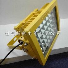 户外LED防爆道路灯CCD97防爆投光灯