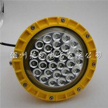 TGQ1204-50WLED防爆灯高亮化防爆厂房车间灯图片