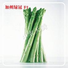 加州绿冠芦笋种子多少钱一斤,国际优质绿白兼用芦笋新品种,北京中农天腾种业全国经销图片